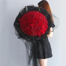 ww痴情绝对——99支精品红玫瑰