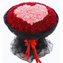 我爱你——520支精品红玫瑰