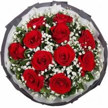 一眼万年——11支精品红玫瑰