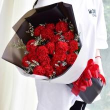 丝丝温暖——19支红色康乃馨